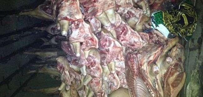 13 tons of meat seized while being smuggled into DNR