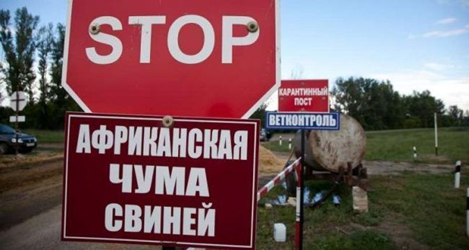 Buses get stopped in Crimea due to swine flu outbreak