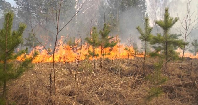 Extreme fire emergency in Crimea continues