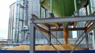 Crimean wheat to be sold to China through Russia