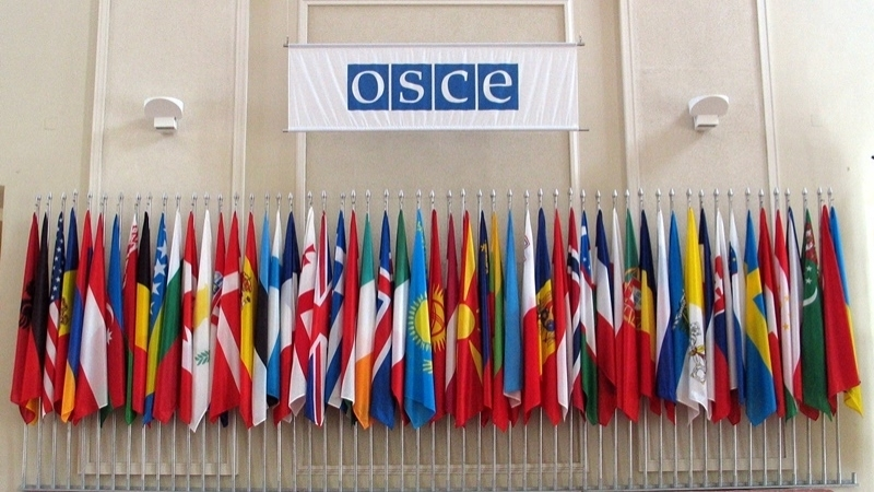 Ukraine's statement to OSCE on RF aggression and illegal invasion