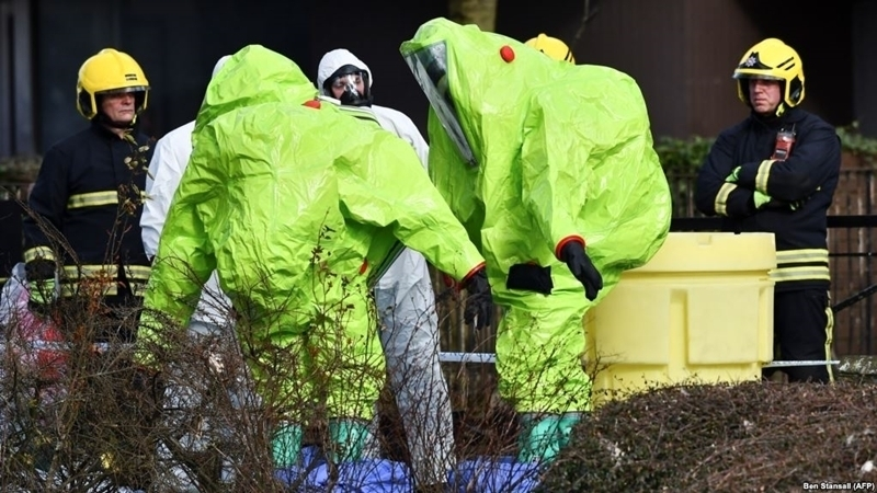 Only Russian government has motives for attack in Salisbury – Nauert