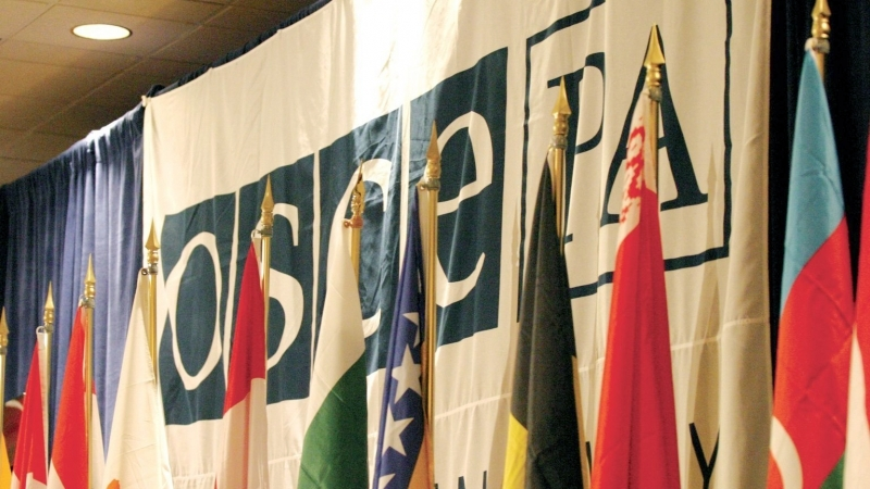 President of OSCE PA confirmed support of territorial integrity of Ukraine