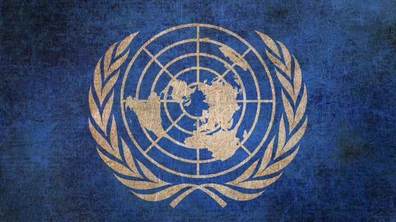 Ossetian professor asks UN to protect native languages of peoples of Russia
